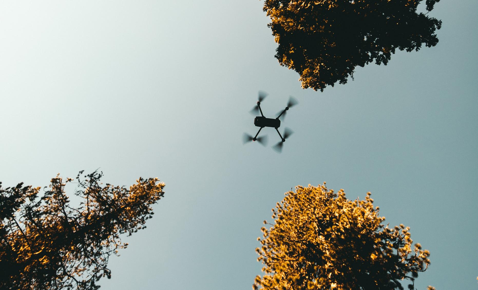 Dronen lennättämisestä maidolla skoolaamiseen – 15-vuotias Kalle tutustui viestintätoimiston arkeen