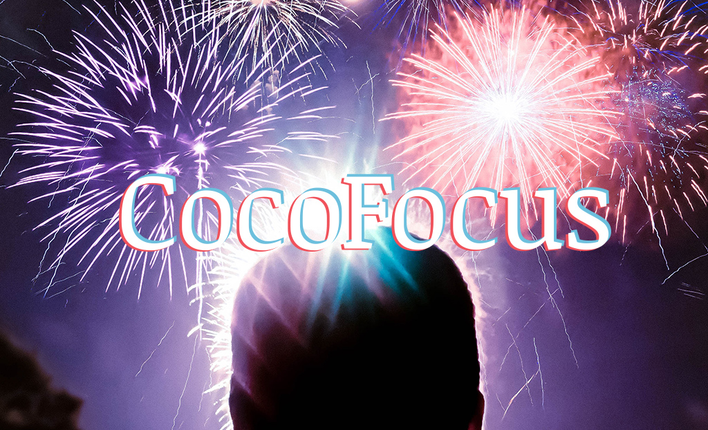 CocoFocus: Mikä kiinnosti eniten vuonna 2019?